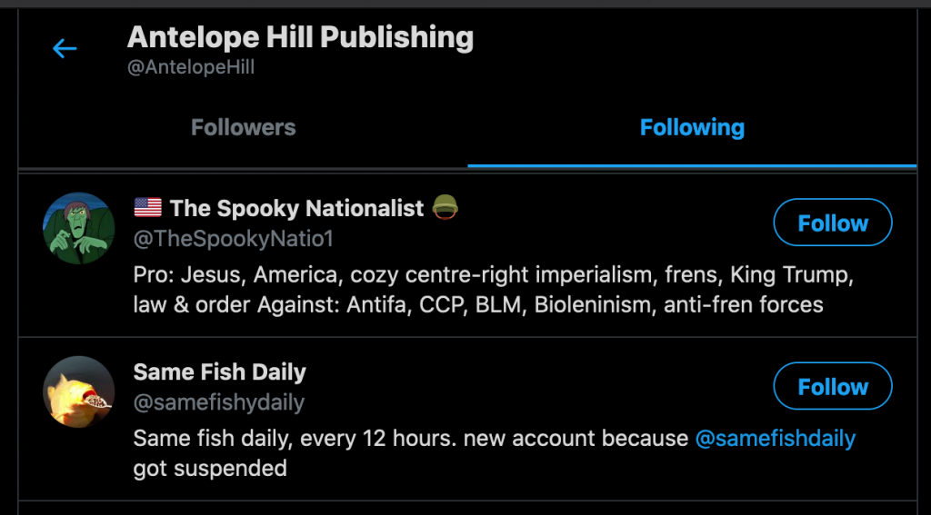 """Out of the eighteen generic and public-figure accounts that Antelope Hill Publishing follows, """"The Spooky Nationalist"""" was the second."""