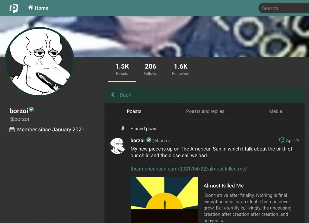 """Borzoi""'s profile on the Nazi-friendly social network poa.st, as it appeared June 2, 2021."