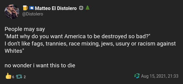 """""""People may say 'Matt why do you want America to be destroyed so bad?' I don't like fags, trannies, race mixing, jews, usury or racism against Whites' no wonder i want this to die"""""""